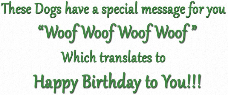These Dogs Have a special message for you. Woof Woof Woof Woof which means Happy Birthday to You!